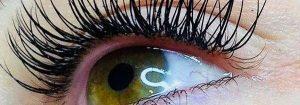 individual-eyelash-extensions-1